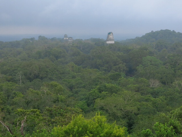 View of the temples through the rain at Tikal