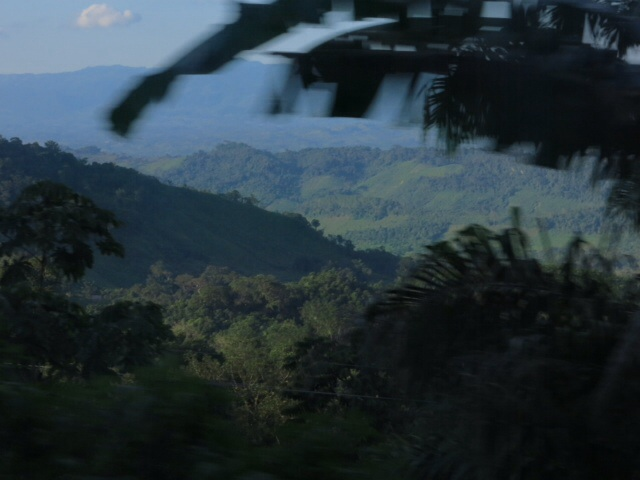 On the road to Palenque