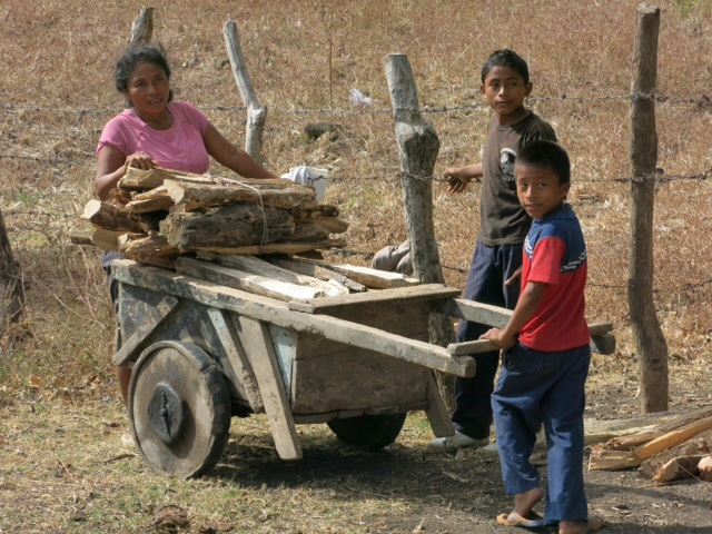 Collecting wood