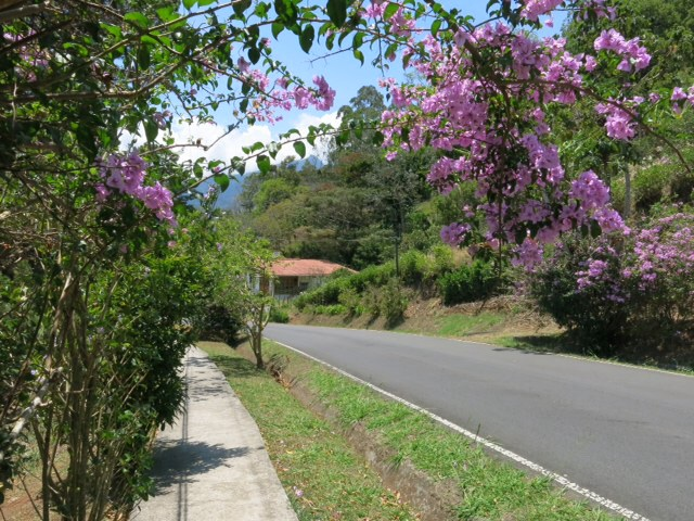 The road into Boquete