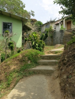 Path to Boquete