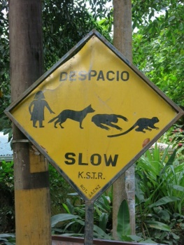 Road sign in Manuel Antonio