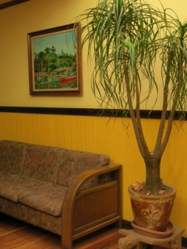 One of the lounge areas in the hotel