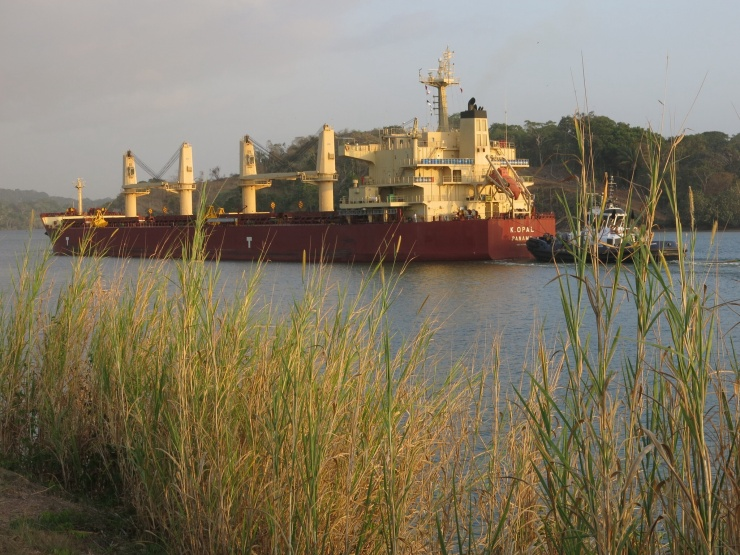 Ship going through the Canal at Gamboa