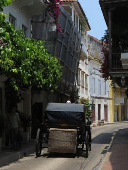 Horse drawn carriage in Cartagena