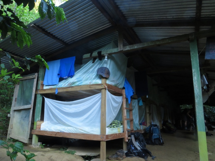 Bunk beds covered in mosquito nets