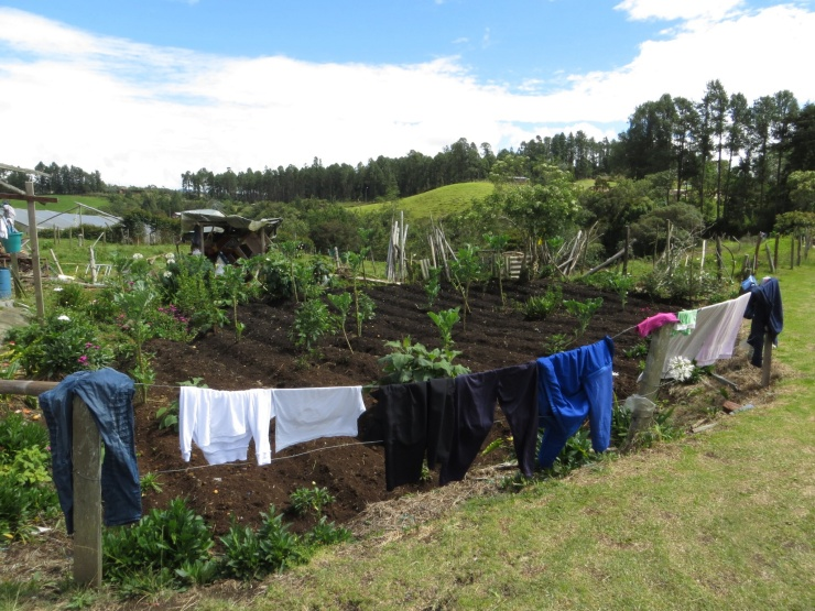 Washing drying at the flower garden in Santa Elena