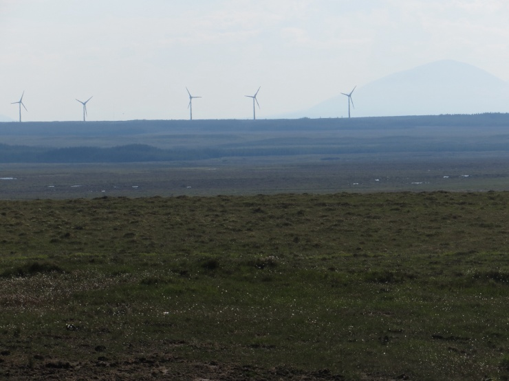 Peat bogs and wind farm