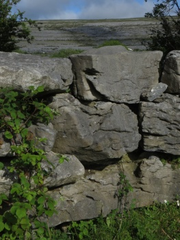 Stone wall at the Burren