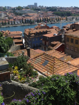 Roof top garden and the river in Porto
