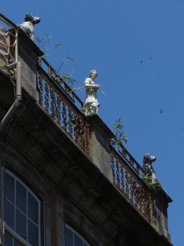 Some interesting guardians of the rooftop!