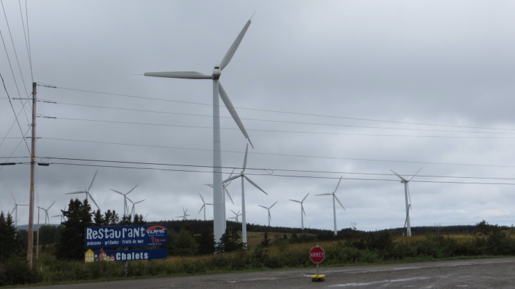 Windmill farm at Cap Chat