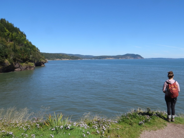 Matthews Head in Fundy Park