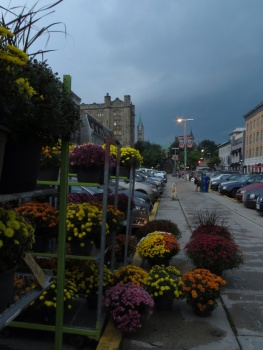 Approaching storm over the market