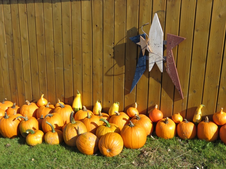 Pumpkins at the motel
