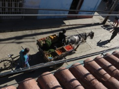 Vegetable cart passes below the casa roof terrace