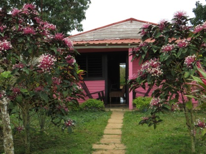 Vinales' home owner must like pink!