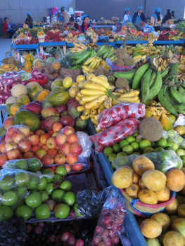 An array of colourful fruit