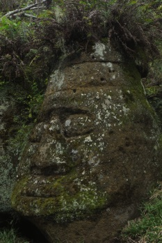 Face in the rock