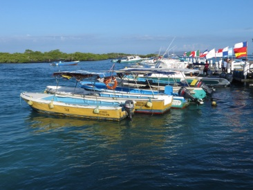 The dock at Isabela