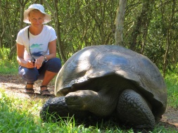 With an 80 year old, 180kg turtle