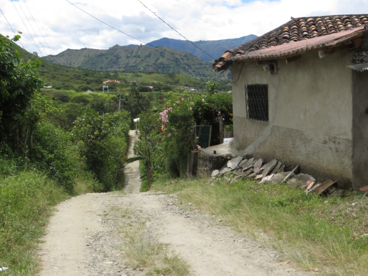 A country lane outside Vilcabamba