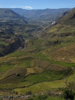 View of the Colca River valley