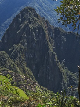Looking down on the ruins from Machu Picchu mountain