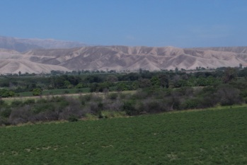 Green valley floors and arid mountains