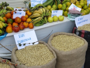 Coffee beans and other organic produce for sale at the Coffee Festival