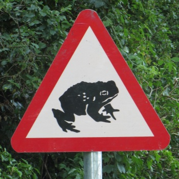 Unusual road sign near Little Melton