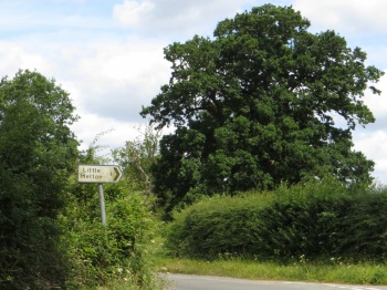 Country lane near Little Melton