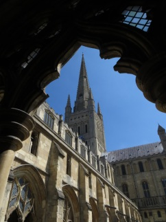 View of the Cathedral from the cloisters