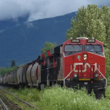 One of many freight trains