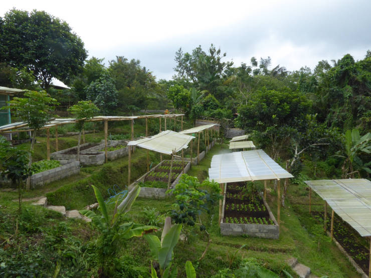 Part of the vegetable gardens at the Silent Retreat