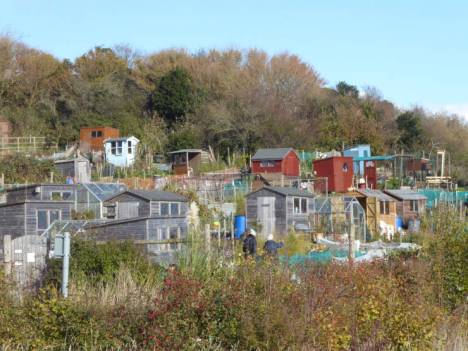 Allotments - a good English institution