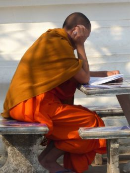 A monk reading