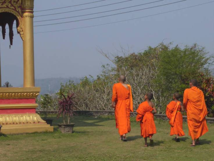 Monks and novices at Wat Phon Phao