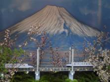 Mt Fuji image in the Flower Dome