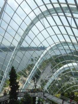 View from the top of the Cloud Forest Dome