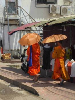 Monks finding shade under the umbrellas
