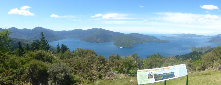 Eatwell's Lookout